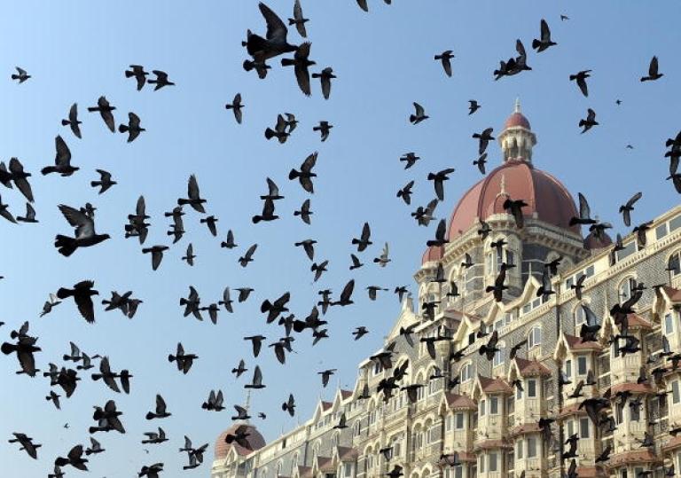 <p>Pigeons fly outside the landmark Taj Mahal hotel - one of the sites of last year's terror attacks - in Mumbai on November 26, 2009.</p>