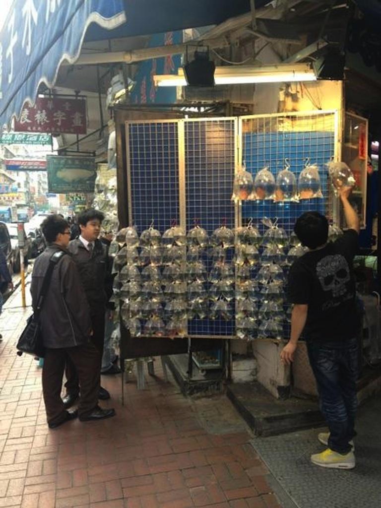 <p>The entrance to Hong Kong's fish market, aptly called