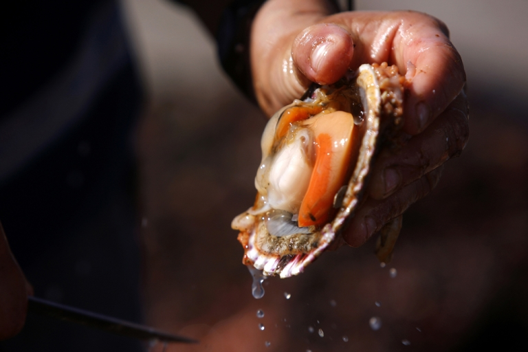 <p>A man rinses a scallop shell.</p>