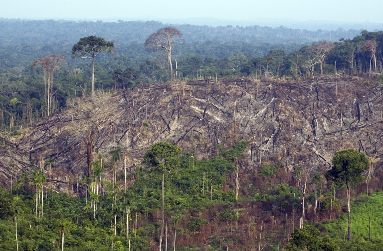 <p>Aerial view of a burnt out sector of the Jamanxim National Forest at an illegal settlement November 29, 2009, in the Amazon state of Para, northern Brazil.</p>