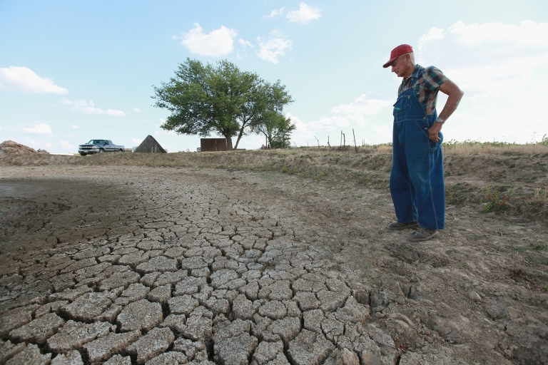 <p>Marion Kujawa looks over what usually is a pond he uses to water the cattle on his farm in Ashley, Illinois.</p>