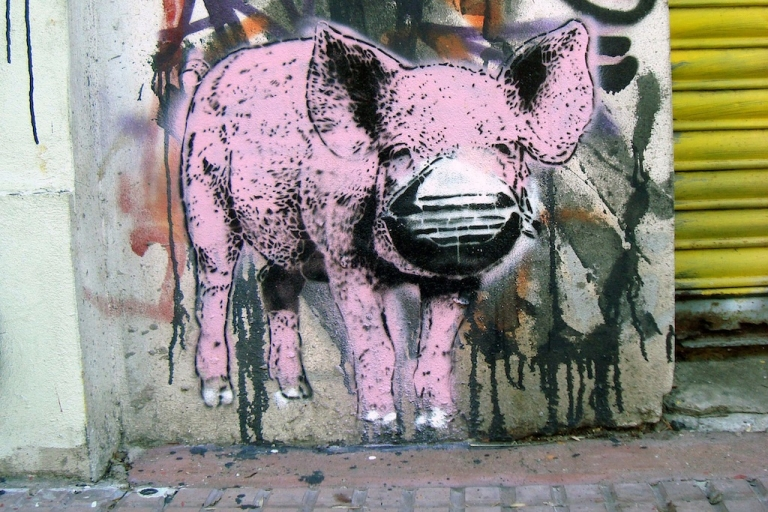 <p>The stencil collective rundontwalk painted this pig as a comment on panic surrounding the 2009 swine flu outbreak.</p>