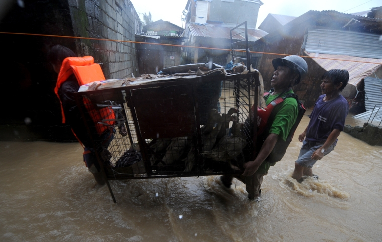 <p>Rescue workers carry ducks as they help residents evacuate a flooded area during typhoon Nesat in San Mateo, Rizal, east of Manila. Sept. 27, 2011.</p>