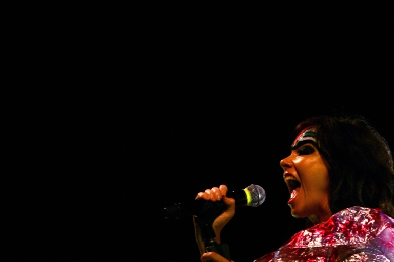 <p>Iceland's singer Bjork performs in Istanbul on August 3, 2008.</p>