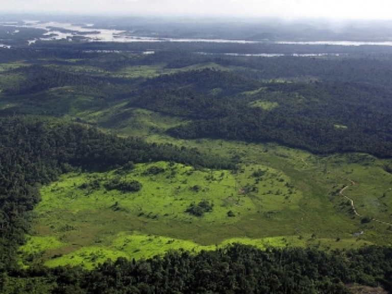 <p>A deforested area along the border of the Xingu River, in the region where the Belo Monte dam is due to be built, Feb. 19, 2005.</p>