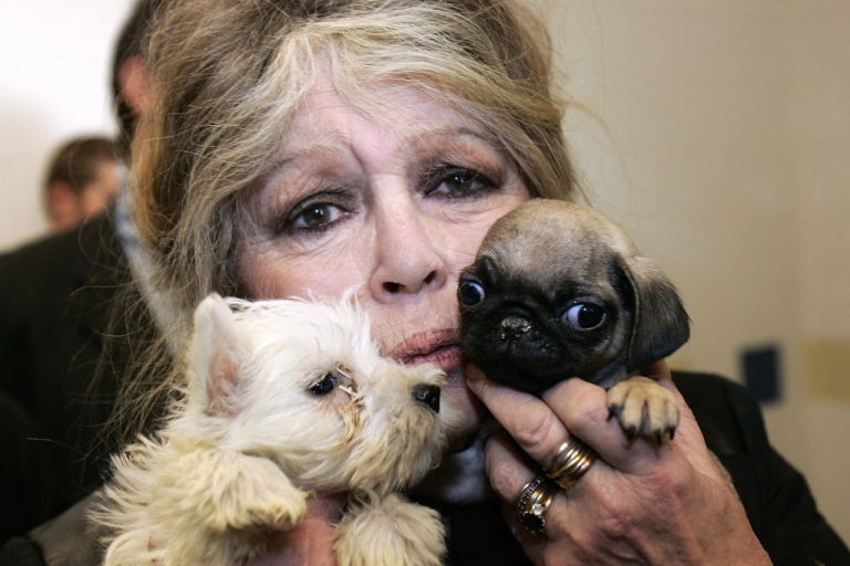 <p>French actress Brigitte Bardot poses on December 28, 2005, in Nice with puppies seized by customs officers in France.</p>