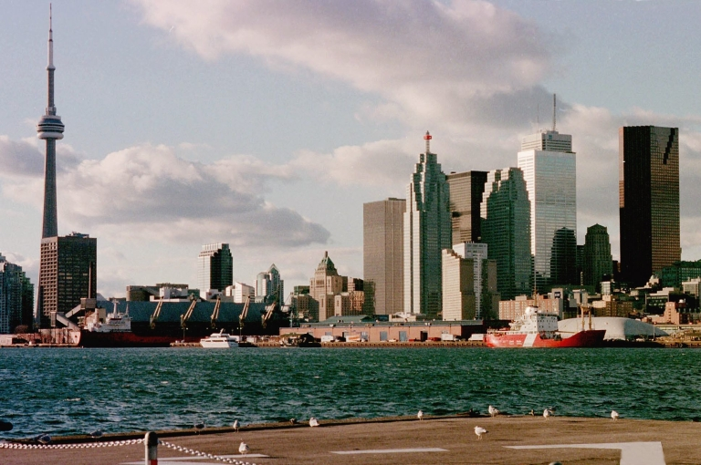 <p>Environmentalists estimate that 1 million birds die each year in collisions with Toronto's buildings.</p>