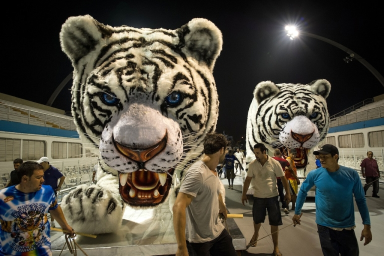 <p>Members of the Império da Casa Verde samba school move their floats portraying white tigers to the starting position at the Sambódromo two days before the Samba Carnival in São Paulo, Brazil, on February 15, 2012.</p>