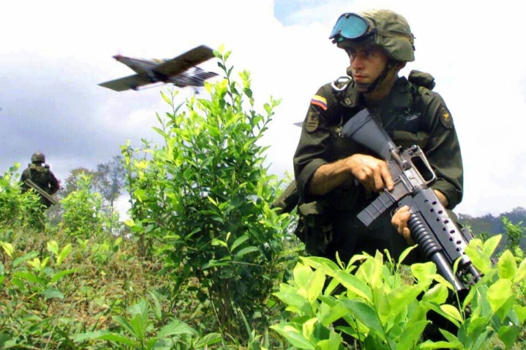 <p>Why are we here? A Colombian soldier sits in a field of coca leaves.</p>