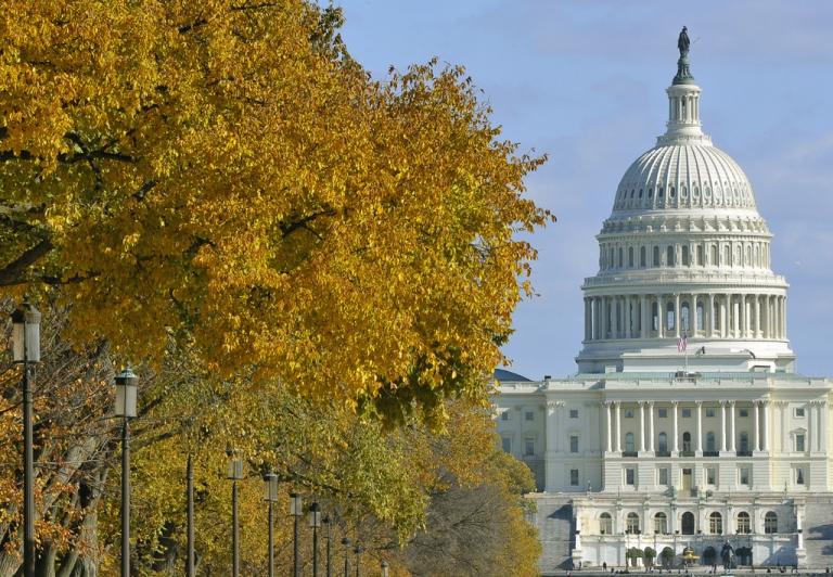 <p>The US Congress building seen during a sunny November afternoon in Washington, DC, November 06, 2011.   AFP PHOTO/Mladen ANTONOV (Photo credit should read MLADEN ANTONOV/AFP/Getty Images)</p>