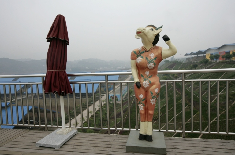 <p>A statue depicting a dairy cow dressed in Chinese Qipao in Chongqing, China on December 2, 2008.</p>