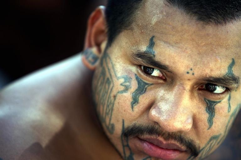 <p>An arrested member of the Mara Salvatrucha gang faces the press in El Salvador's capital of San Salvador.</p>