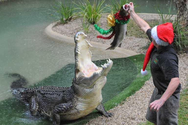 <p>Elvis, seen here being fed holiday-adorned fish, made headlines today when he attacked one of the lawn mowers at the Australian Reptile Park near Sydney.</p>