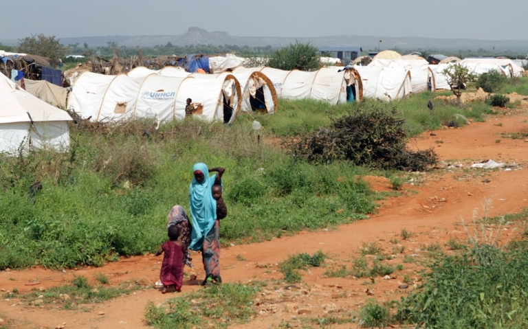 <p>A woman and children walk through the Hilaweyn refugee camp in Dolo Ado, Ethiopia, on December 15, 2011.</p>