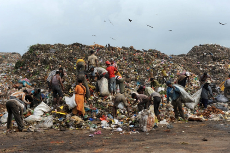 <p>Filthy rich? Indian ragpickers search for re-cyclable materials among rubbish at a dumping ground of the Ahmedabad Municipal Corporation near Ahmedabad on September 13, 2011.</p>