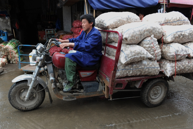 <p>A Chinese worker transports bags of garlic at a market in Hefei, central China's Anhui province on May 19, 2010.</p>