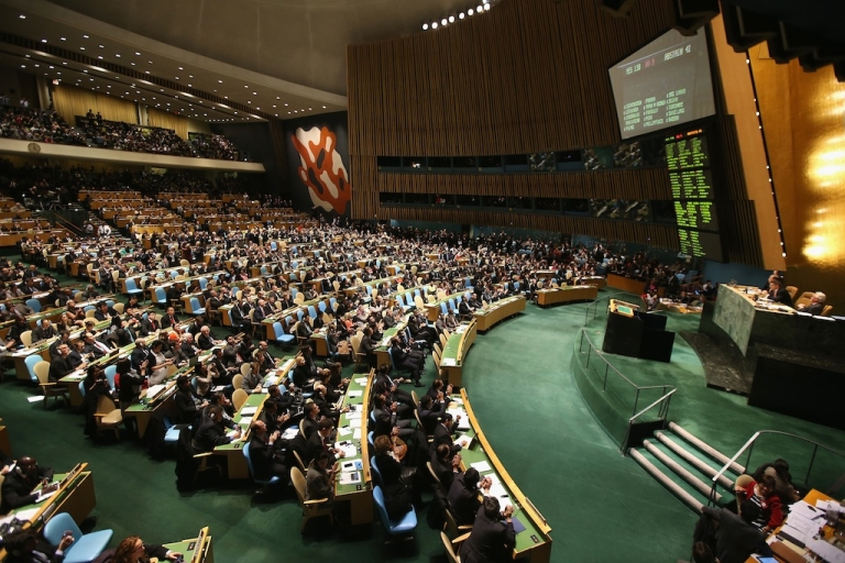 <p>The United Nations General Assembly has passed a resolution to ask the world's nations to implement universal healthcare systems.</p>
