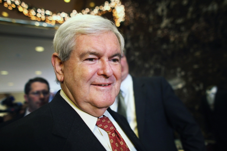 <p>Republican presidential candidate and former Speaker of the House Newt Gingrich's gay half-sister, Candace Gingrich-Jones said in an interview that she would vote for Obama.</p>