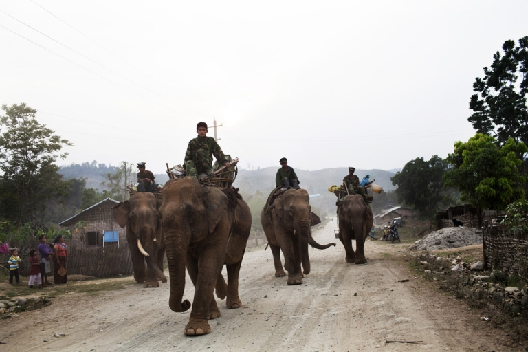 <p>Kachin Independence Army soldiers ride elephants toward the front lines in Kachin state, Myanmar, April 1, 2012.</p>