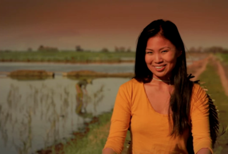 <p>The actress in U.S. Senate hopeful Pete Hoekstra's controversial ad: an Asian-American depicting a Chinese woman pleased with America's debt to China.</p>