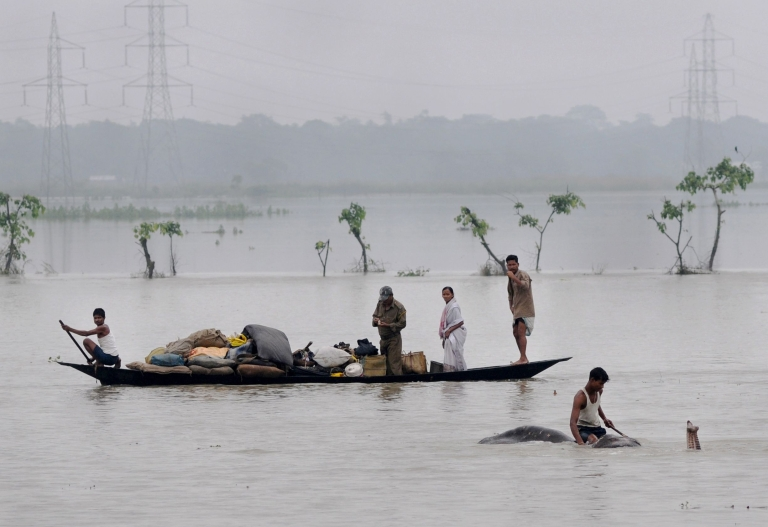 <p>A mahout moves an elephant to higher ground as villagers paddle with their belongings through flood waters in the Pobitora Wildlife Sanctuary, some 55 kms from Guwahati, the capital city of the north-eastern state of Assam on June 28, 2012.</p>