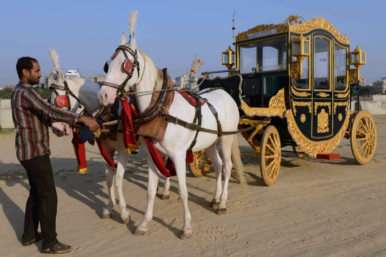 <p>Horse carriage-maker Sameer Bhai Baggiwala handles horses pulling his new air-conditioned buggy in Ahmedabad. The carriage, inspired by one ridden by England's Queen Victoria, took Baggiwala seven months to construct at a cost of 600,000 rupees (11,110 USD) and will be rented out for wedding and religious functions.</p>