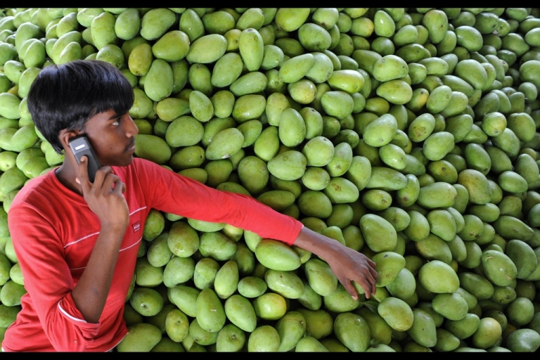 <p>An Indian farmer talks on his mobile phone as he rests on a pile of mangoes at the Gaddiannaram fruit market in Kothapet, located in the outskirts of Hyderabad.</p>