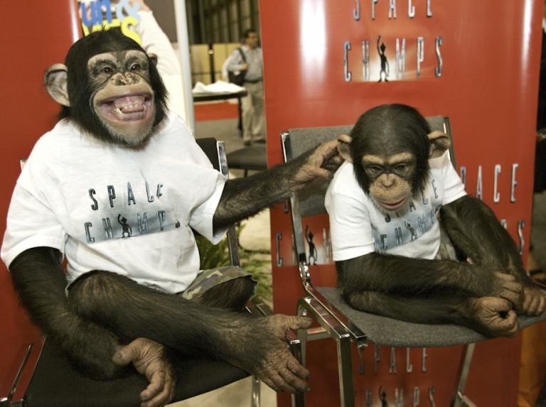 <p>Chimpanzees from the Fox movie 'Space Chimps' pose during the opening day of the Licensing International Expo on June 19, 2007 in New York. Iran today announced renewed plans send monkeys into space after a failed attempt last year.</p>