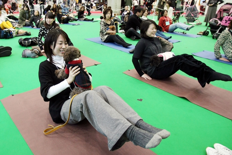 <p>Owners and their dogs experience Dog Yoga at the New Year Dog Party held at Tokyo Big Sight on Jan. 12, 2008 in Tokyo, Japan. Dog yoga has recently caught on in Hong Kong.</p>