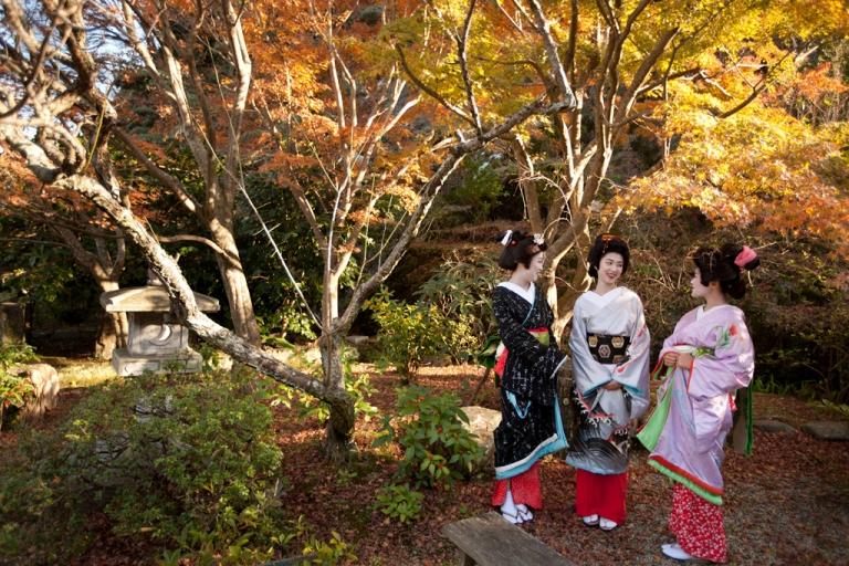 <p>Three trainee geisha, known as 'maiko' until they make their debut appearance, take a walk in Ryosen-ji shrine in Shimoda, Japan, Dec. 14, 2011. From left to right: Rinka (black kimono), Awagiku (white/silver) and Iroha (pink).</p>