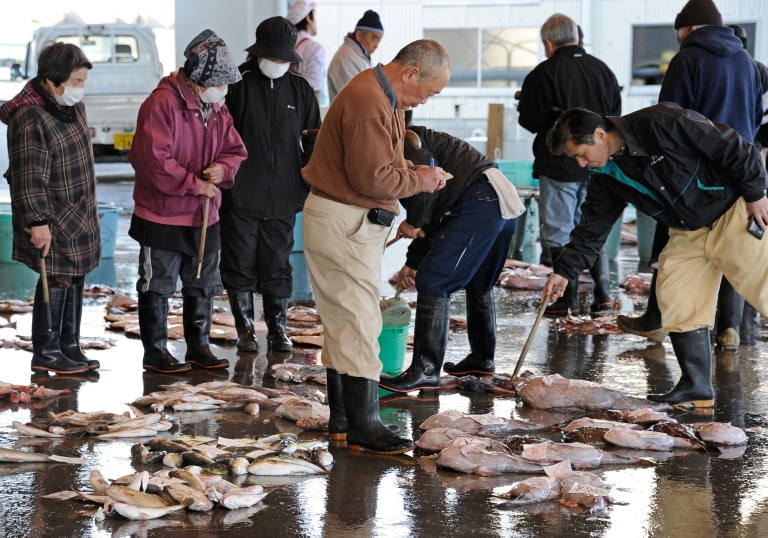 <p>Brokers check fish at the Hirakata Fish Market in Kitaibaraki, Ibaraki Prefecture, trading for the first time since the March 11 earthquake and tsunami disaster, on April 5, 2011. The health ministry said that iodine-131 at a level of 4,080 becquerels per kilogram had been detected in a small fish called konago, or sand lance, caught off Ibaraki prefecture, south of the plant.</p>