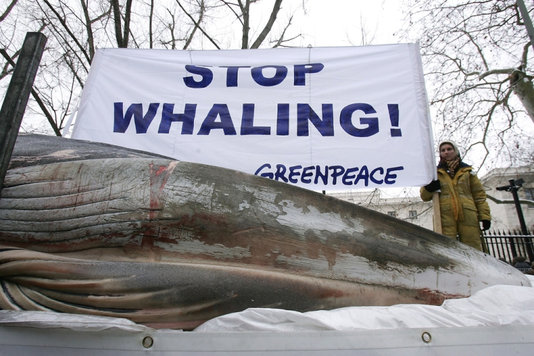 <p>A Greenpeace activist holds a sign that reads: