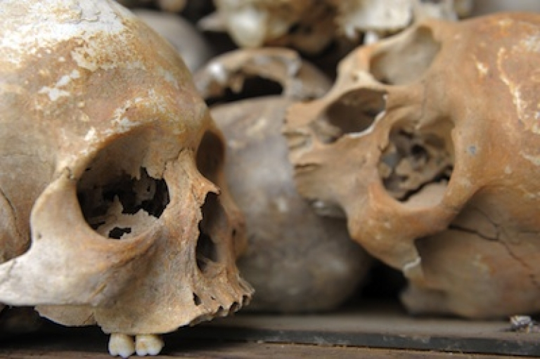 <p>Skulls of Khmer Rouge victims are displayed at the Choeung Ek killing fields memorial in Phnom Penh, Cambodia.</p>