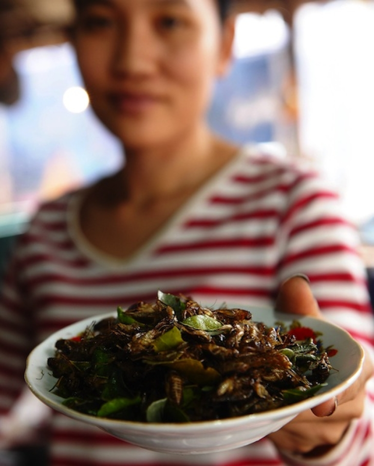 <p>A fried insects vendor hands over a plate of fried crickets at a local market in Vientiane, Laos. Raising crickets for foods is seen as a solution to the malnutrition in the poor landlocked country.</p>