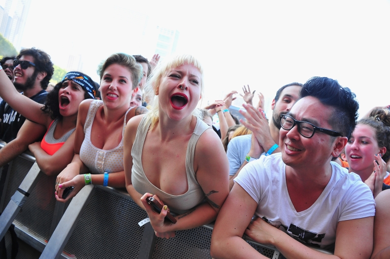 <p>The crowd atmosphere at Lollapalooza.</p>