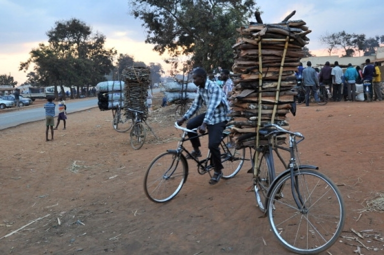 <p>A man rides his bicycle pas another bike with a pile of wood attached outside the village of Lilongwe, Malawi on July 13, 2011. Malawi is one of the world's poorest countries.</p>
