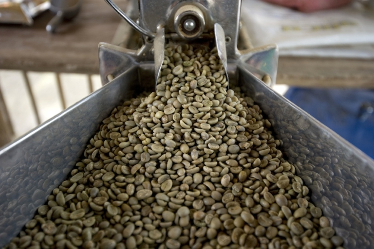 <p>Picture of coffee beans in a thresher at the Hacienda Villa Martha in the municipality of La Gloria, department of Risaralda, Colombia, on August 12, 2011.</p>