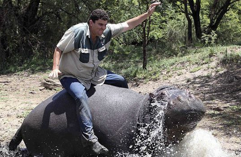 <p>Marius Els rides his pet hippo, Humphrey. The hippo killed Els on November 12, 2011 in a dam at his farm in the Free State, South Africa.</p>