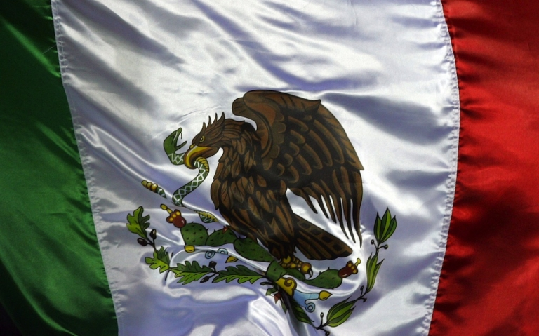 <p>The Mexican flag.</p>