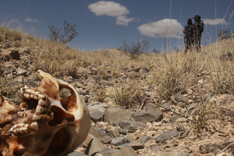 <p>A skull in Juarez, one of Mexico's border towns.</p>