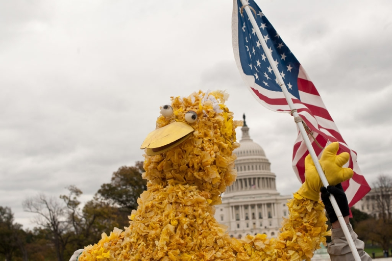 <p>A protester dressed as Big Bird waves a US flag in front of the Capitol during the