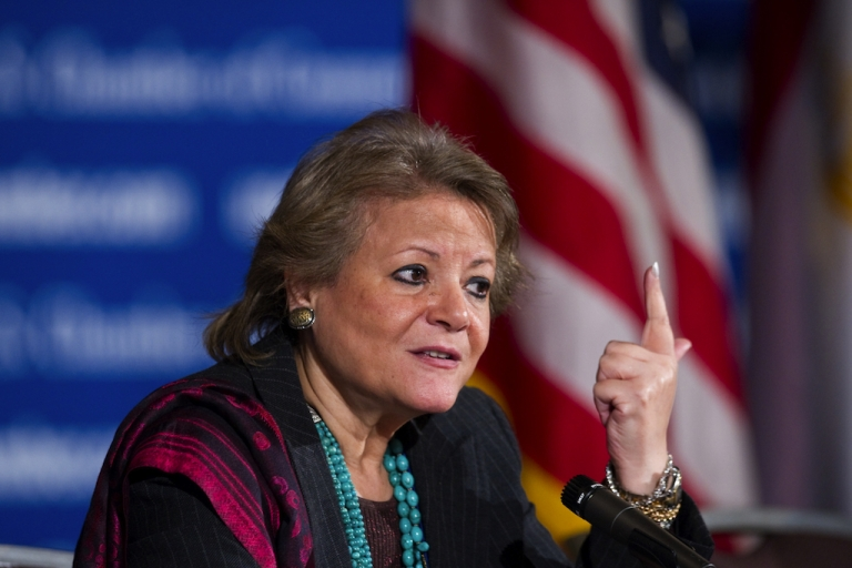 <p>Fayza Aboul Naga, Egypt's minister of international cooperation, has been leading the case against foreign-funded NGOs.</p>