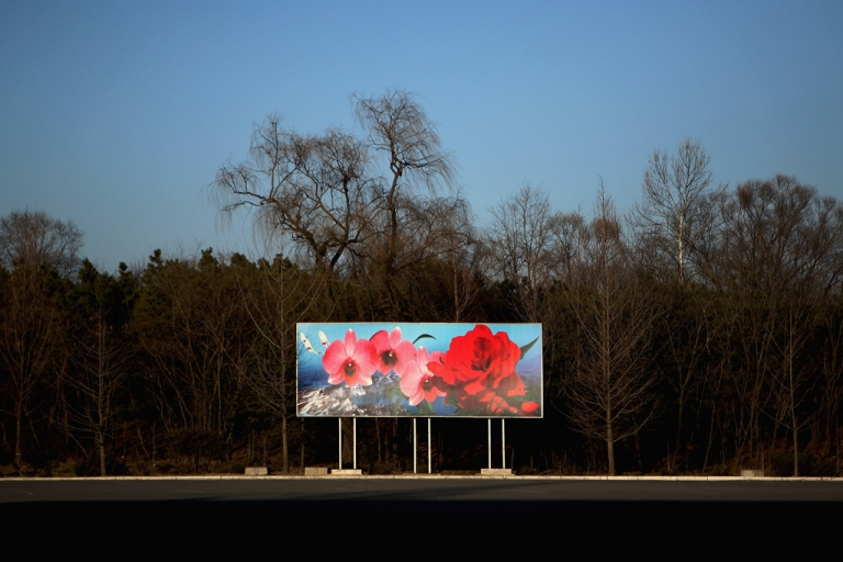 <p>A picture of Kim Il Sung flower in Pyongyang, North Korea.</p>