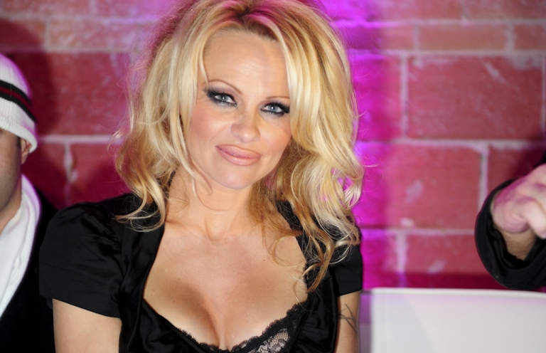 <p>Away in a manger? Canadian sexpot Pamela Anderson will play the Virgin Mary in an upcoming Christmas special on CTV.</p>