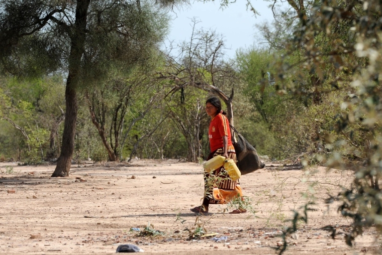 <p>A woman goes in search of water in the Paraguayan Chaco region, on Nov. 19, 2009.</p>