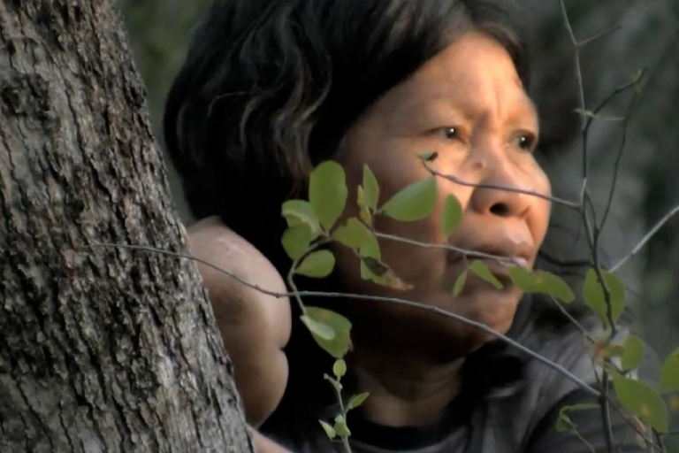 <p>Some Paraguayan indigenous people would prefer to remain in isolation to keep their way of life.</p>