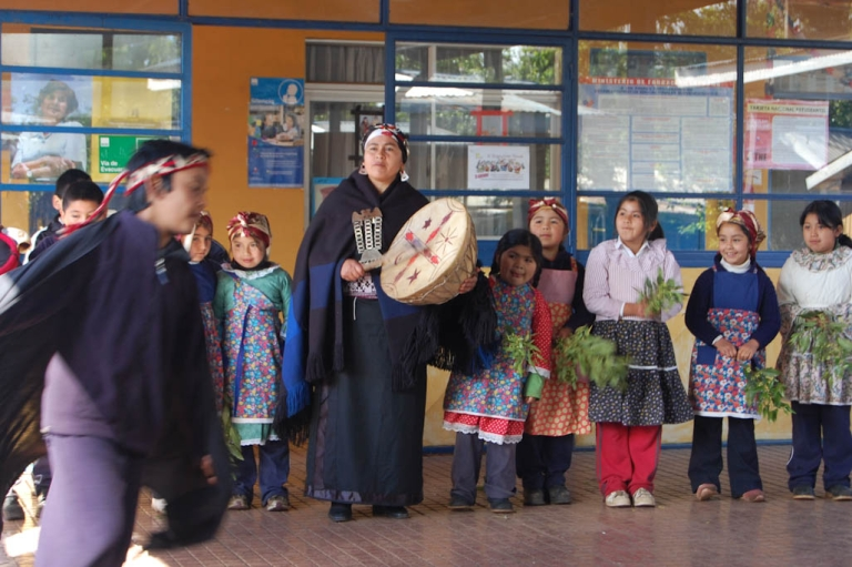<p>Mapuche children from the Colpanao community present a dance to greet a group of students from Santiago.</p>