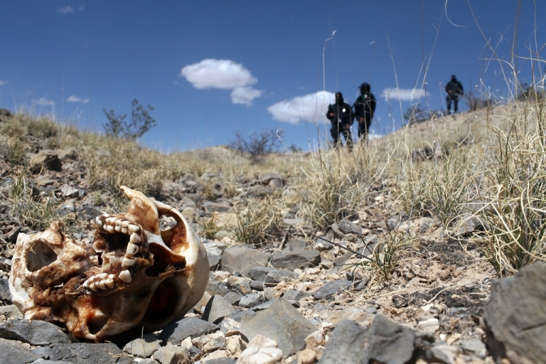 <p>Police found at least a dozen decapitated and dismembered bodies near Guadalajara, Mexico, on May 9, 2012.</p>
