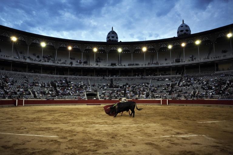 <p>Julian Lopez makes a pass on a bull, June 6, 2010.</p>
