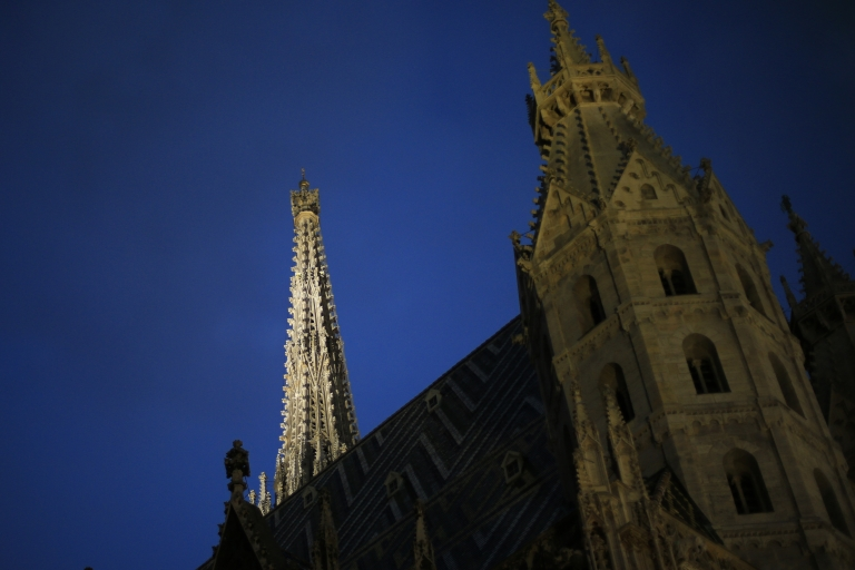 <p>The Stefansdom (St Stephan's church) is seen at dusk in Vienna on April 23, 2013.</p>